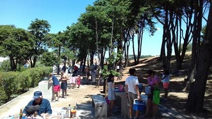 Parque de Merendas João David