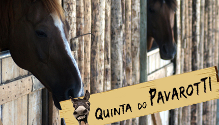 Quinta do Pavarotti proporciona aulas gratuitas