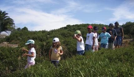 Eco Escola Tom da Terra realiza Festa de Verão