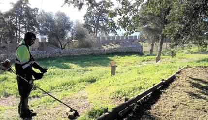 Serviços da Junta asseguram limpeza e embelezamento do Castelo