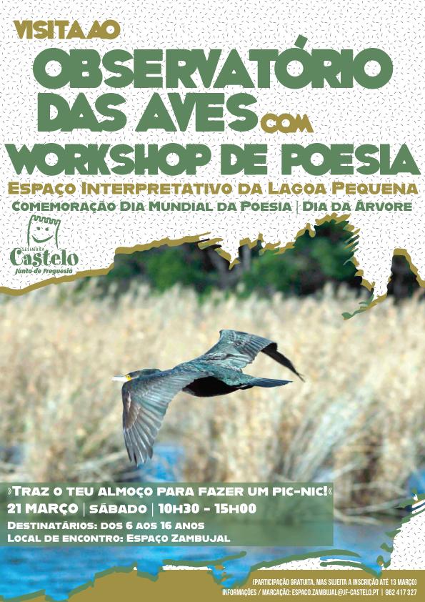 Visita ao Observatório da Aves | LAGOA PEQUENA